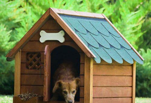 Köpek Kulübesi Isıtma - Karbon Film Barınak Isıtma